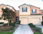 8722 Turnstone Haven Place, Tampa image
