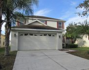 20728 Great Laurel Avenue, Tampa image