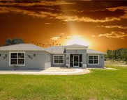 11376 Raschke Run, Brooksville image