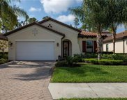 4363 Raffia Palm Cir, Naples image