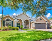 17723 Currie Ford Drive, Lutz image
