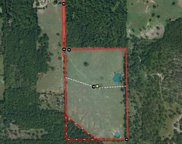 438 County Rd 4106, Jacksonville image