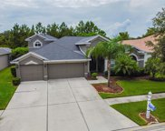 4339 Waterford Landing Drive, Lutz image