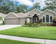 1603 Brilliant Cut Way, Valrico image