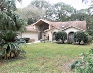9425 Sw 192nd Court Rd, Dunnellon image