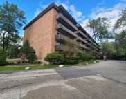 512 Redondo Drive Unit #110, Downers Grove image