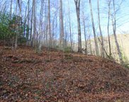 Lot 12 Triple Creek Rd, Franklin image