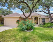 9014 Shade Tree, San Antonio image