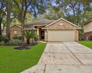 111 W Russet Grove Circle, The Woodlands image