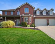 8107 Mallow Drive, Tinley Park image