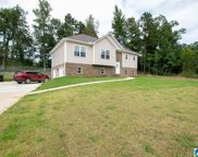 10990 Trace Drive, Warrior image