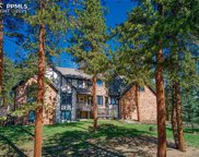 249 Woodside Drive, Pine image