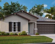 13518 Wild Ginger Street, Riverview image
