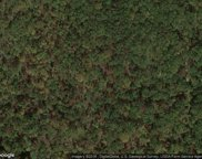 A/20 Wallace South Rd, Tallassee image