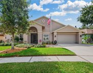 9503 Pebble Glen Avenue, Tampa image