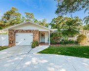 105 Joyce Street, Safety Harbor image