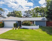 2273 Willow Tree Trail, Clearwater image