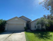 12961 Tribute Drive, Riverview image