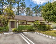 304 Cactus Hill Court, Royal Palm Beach image