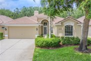 5155 Pinnacle Drive, Oldsmar image