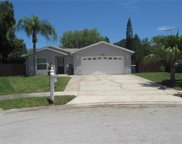 2520 Fawn Court, Clearwater image