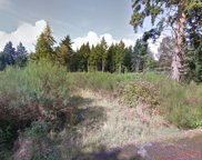 0 Fishpond Creek Dr SW, Tumwater image