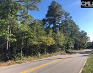 Amicks Ferry Road, Chapin image