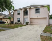 10421 Fly Fishing Street, Riverview image