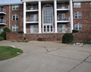 4339 Sunridge Unit #C, St Louis image