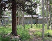 12891 Callae Drive, Conifer image