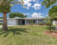 359 Peppertree Road, Venice image