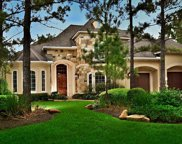 35 SEASONS TRACE, The Woodlands image