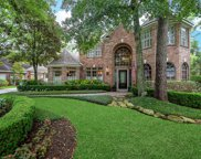 14 Golden Thrush Place, The Woodlands image