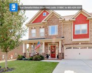 51 Bunchberry Court, Chapin image