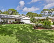 6436 Lost Tree Lane, Spring Hill image
