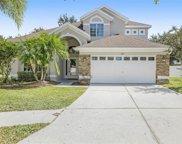 8217 Whistling Pine Way, Tampa image
