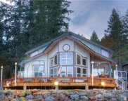 164 B Timberline Dr, Packwood image