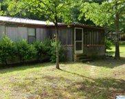 8885 County Road 44, Cedar Bluff image