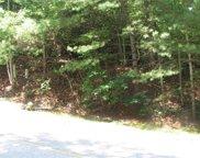 176 Overlook  Drive, Flat Rock image