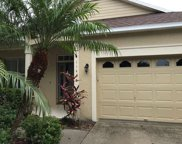 11418 Water Willow Avenue, Lakewood Ranch image