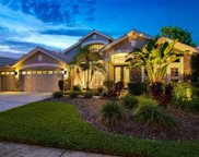 10204 Cypress Links Drive, Tampa image