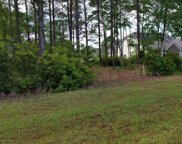 310 E Dolphin View, Sneads Ferry image