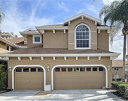 4203 Preserve Place, Palm Harbor image