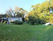 17069 Benes Roush Road, Brooksville image