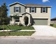 10619 Fuzzy Cattail Street, Riverview image