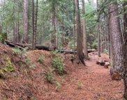 5363  Pine Ridge Drive, Grizzly Flats image