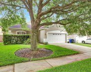 15805 Stags Leap Drive, Lutz image