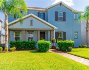 17271 Cinnamon Fern Way, Land O' Lakes image