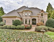 14423  Brick Church Court, Charlotte image