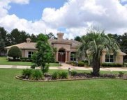 9460 Bearfoot Trail, Weeki Wachee image